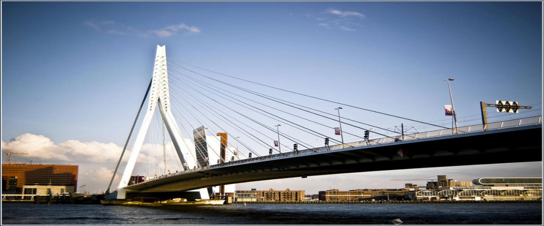 Rotterdam krijgt er een aap bij: King Kong Hostel opent binnenkort loft