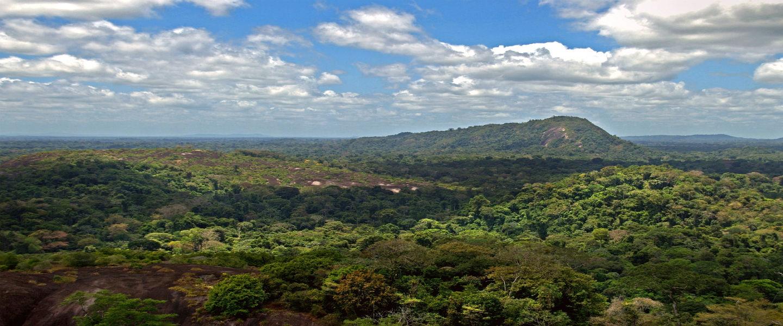Let's go Paramaribo! Top 5 bezienswaardigheden tijdens je reis in Suriname.