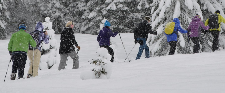 Hochfilzen im PillerseeTal voor wintersporters die meer willen