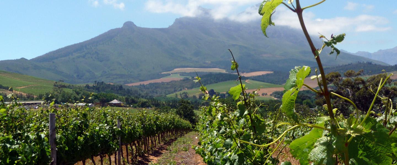 Smart op reis naar Zuid-Afrika