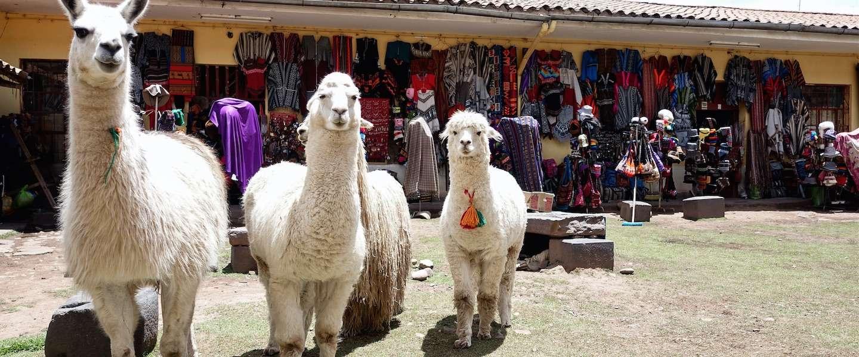 De 5 leukste dingen om te doen in Cuzco - Peru