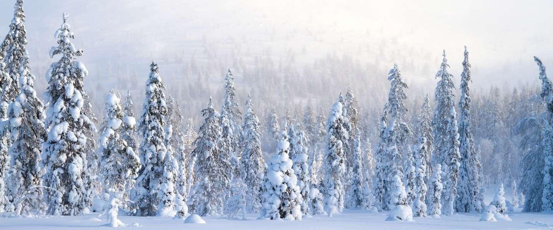 Genieten van de Middernachtzon in Fins Lapland kan nu ook via een app