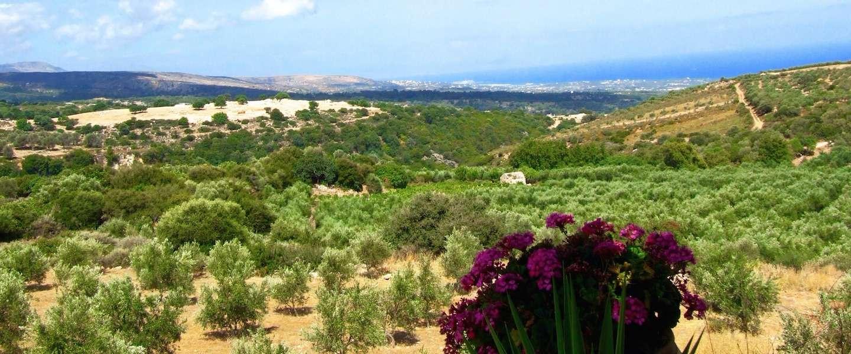 Weg van de massa, op zoek naar het rijke erfgoed van Kreta