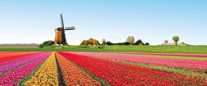 Znalezione obrazy dla zapytania nederland