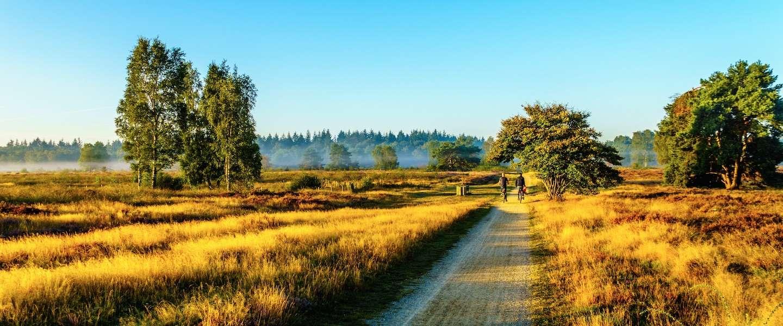 De vijf leukste fietsroutes door Nederland