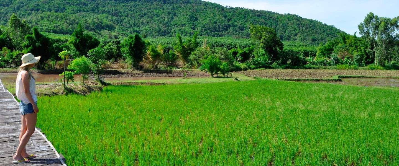 Loei, het ongerepte noorden van Thailand