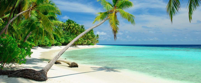 Dreaming of... de Malediven!