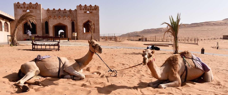 30 foto's die bewijzen waarom jouw volgende reis naar Oman gaat