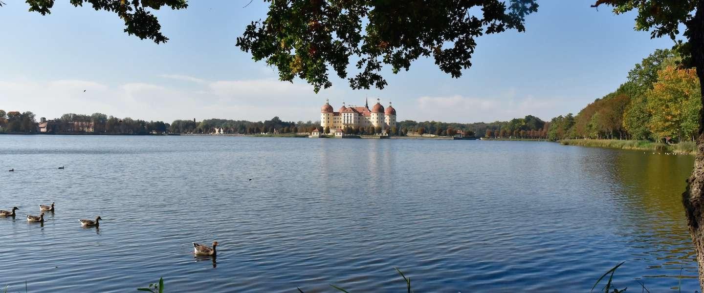 Wijn, kastelen en natuur in de omgeving van Dresden