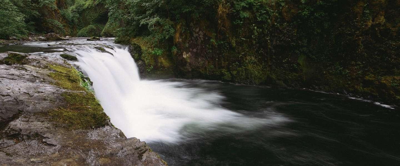 Ontdek de schoonheid van Oregon
