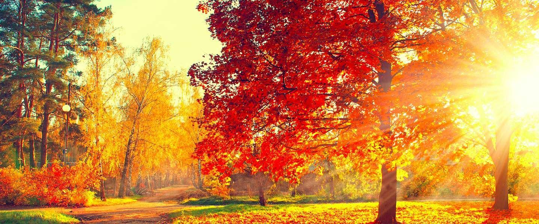 Vijf redenen om in de herfst op vakantie te gaan
