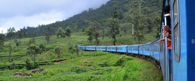 Dit is de perfecte route voor een Sri Lanka rondreis