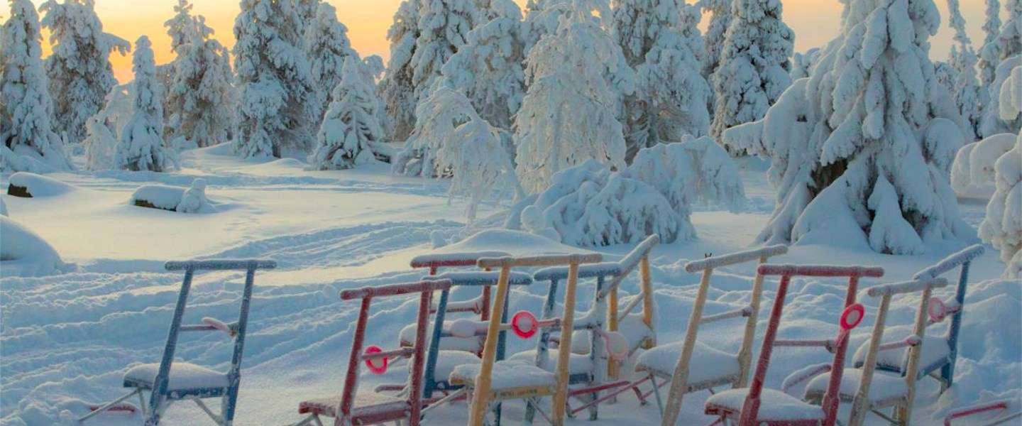 Top 5 to do in Fins Lapland