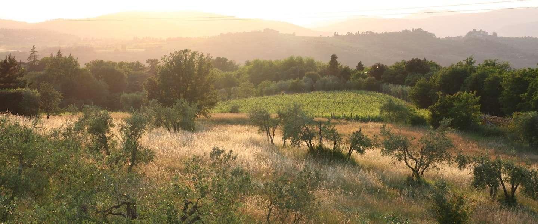 Logeren boven op de berg in hartje Toscane