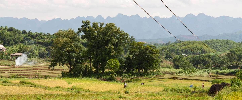 Van Hanoi naar Ho Chi Minhstad: 5 hoogtepunten