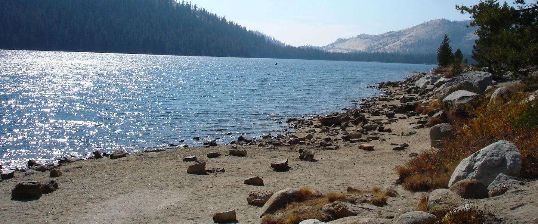 Nog steeds flinke brand in Yosemite National Park (Californië)