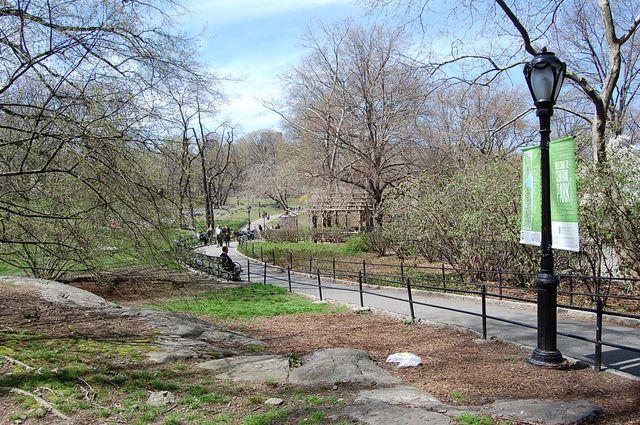 stedentrip_new_york_central_park
