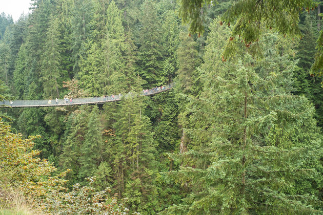 Vancouver_Capilano_suspension_bridge