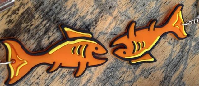 vis_aan_de_maas