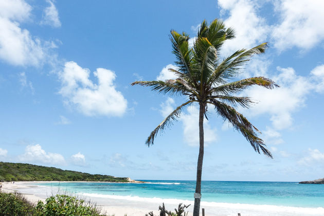antigua-caribisch-eiland-half-moon-bay