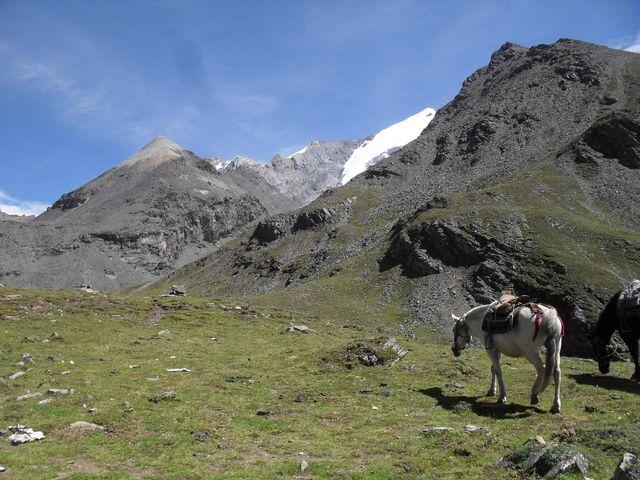 bergen_china_uitdaging