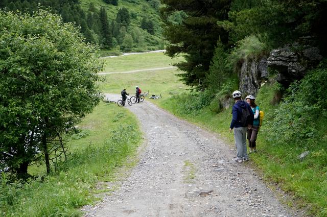 Mountainbike_natuur