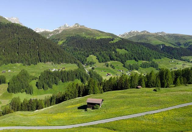 alpen-zwitserland-3