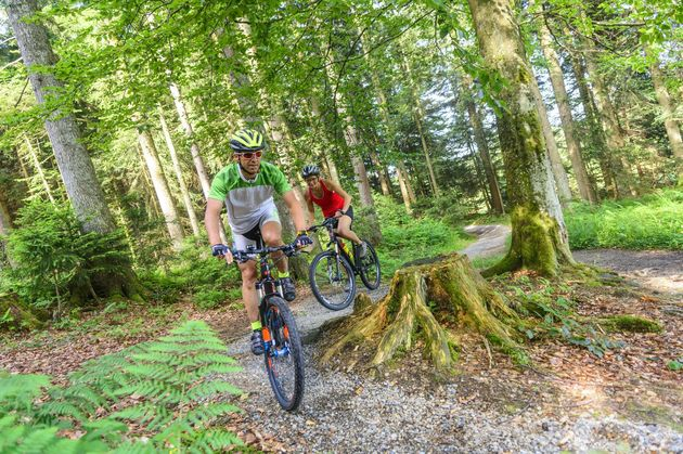 ardennen_mountainbiken