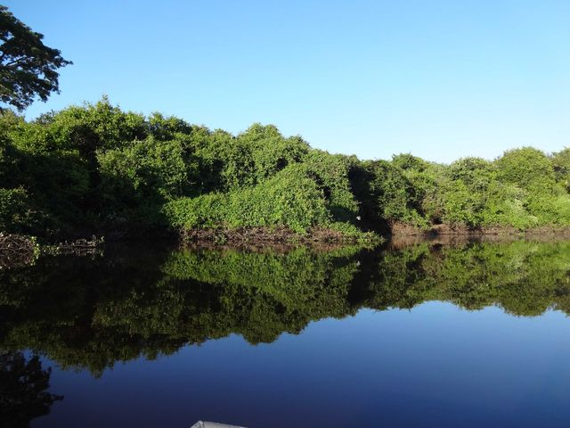 pantanal_brazilie_droomplek