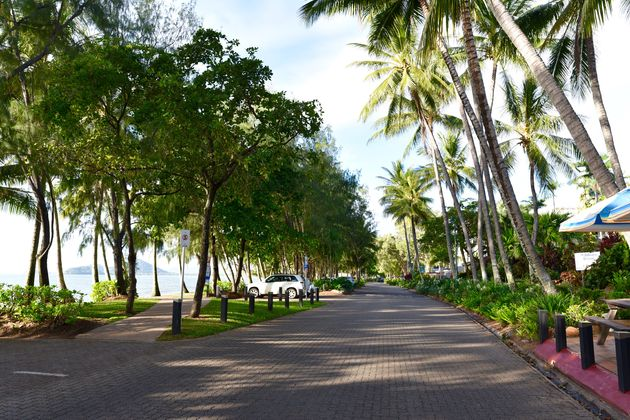 boulevard-palm-cove