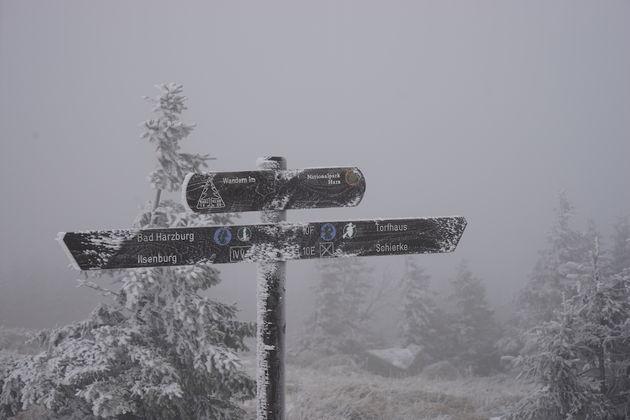 Brockenberg_hike