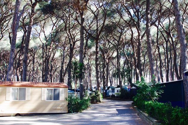 Camping Fabulous Rome