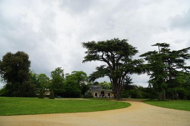 Château_de_Brissac_tuin