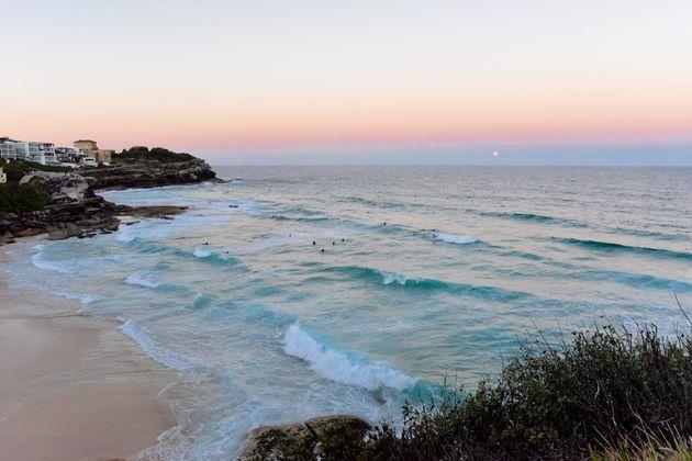 coogee-bondi-coastal-walk
