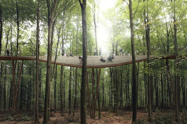 denemarken-treetop-experience-2