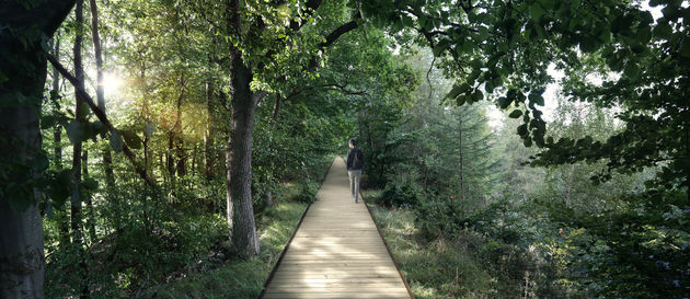 denemarken-treetop-experience-3