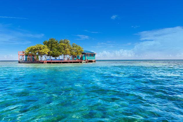 droomhuis-bird-island