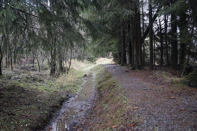 Oberharzer_Wasserwirtschaft_paden