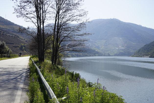 douro_vallei_portugal_rivier_1