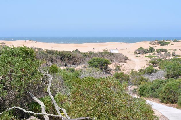 duinen-essaouira