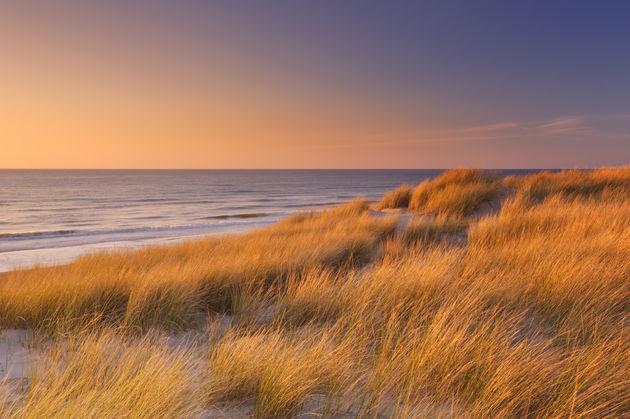 dunes-texel