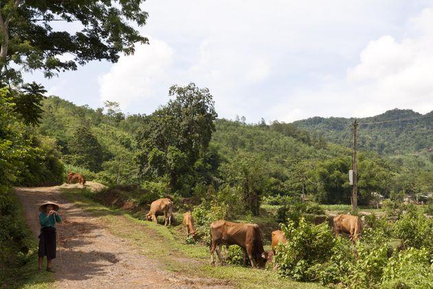 eco-tour-muong