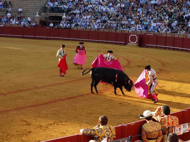 arena_sevilla_stierenvechten