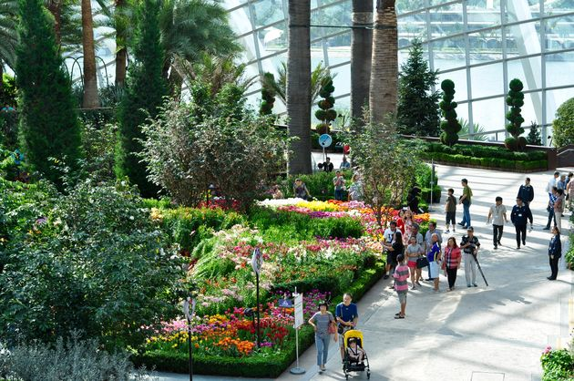 flower-dome-singapore