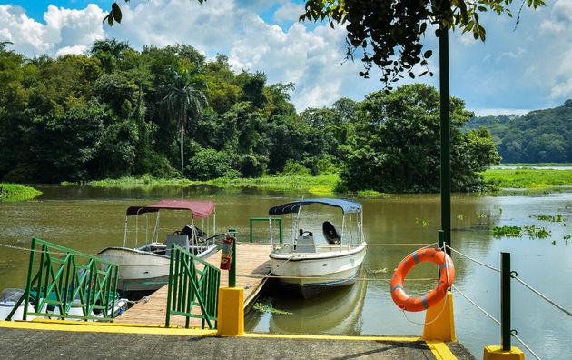 gamboa-rainforest-hotel