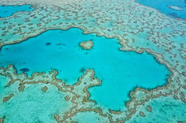 great-barrier-reef-bovenaf