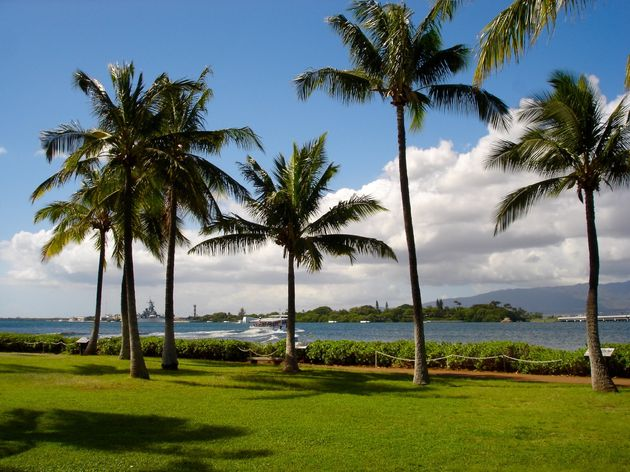 hawaii-inspiratie - 11