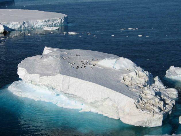 ijsbergen-antarctica
