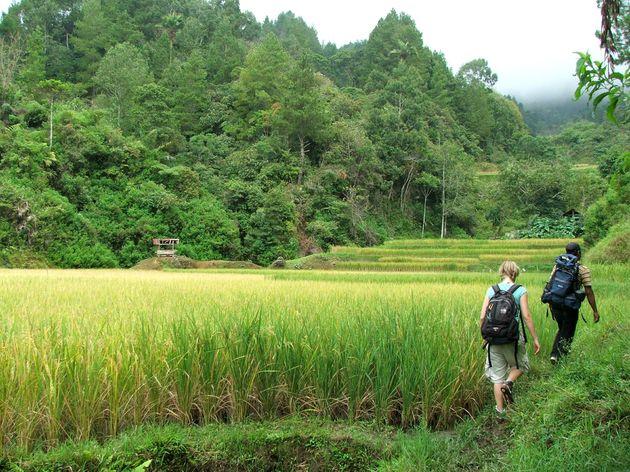 indonesie-sulawesi-toraja-trekking