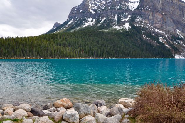 lake-louise-banff-np